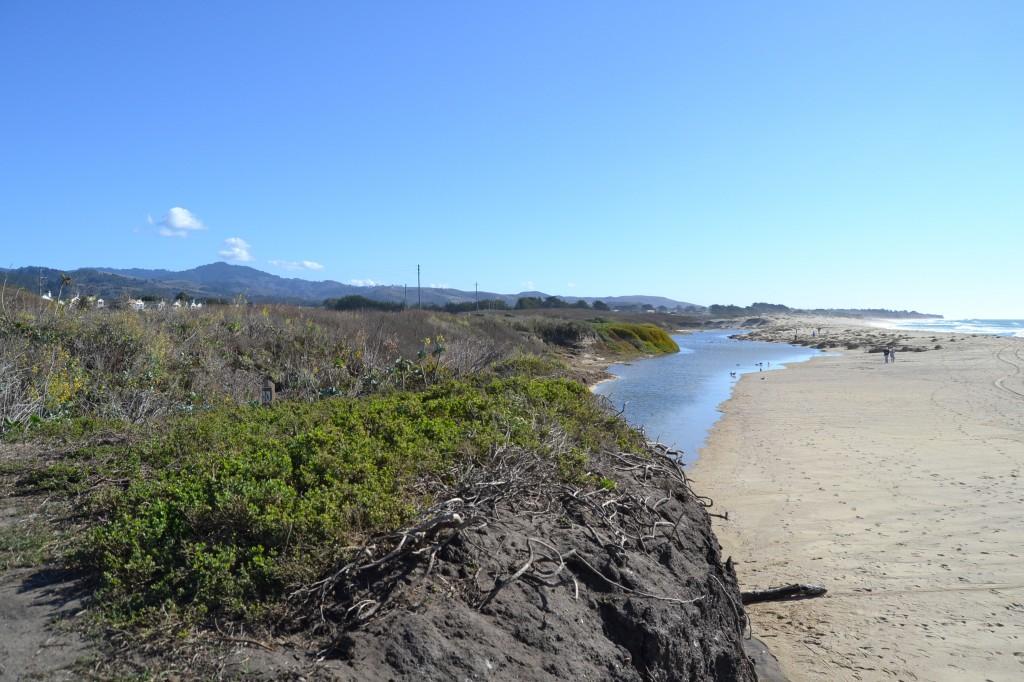 Eroded beach, HMB